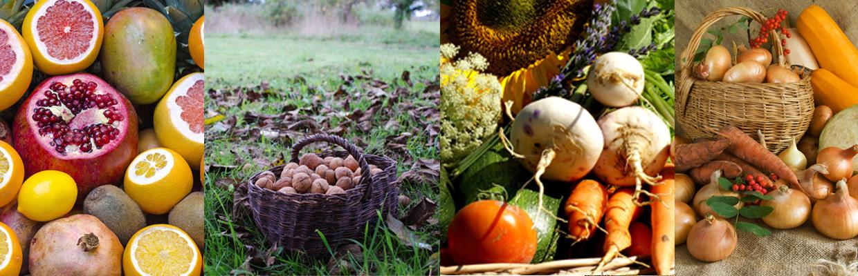 4 détails de photos de paniers de légumes, Bel'Age Services de Proximité, Grenoble, services à domicile