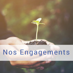 détail de photo de deux mains rassemblées portant de la terre avec une pousse de plante au milieu, lien vers la page de nos engagements depuis l'accueil, Bel'Age Services de Proximité, Grenoble, services à domicile